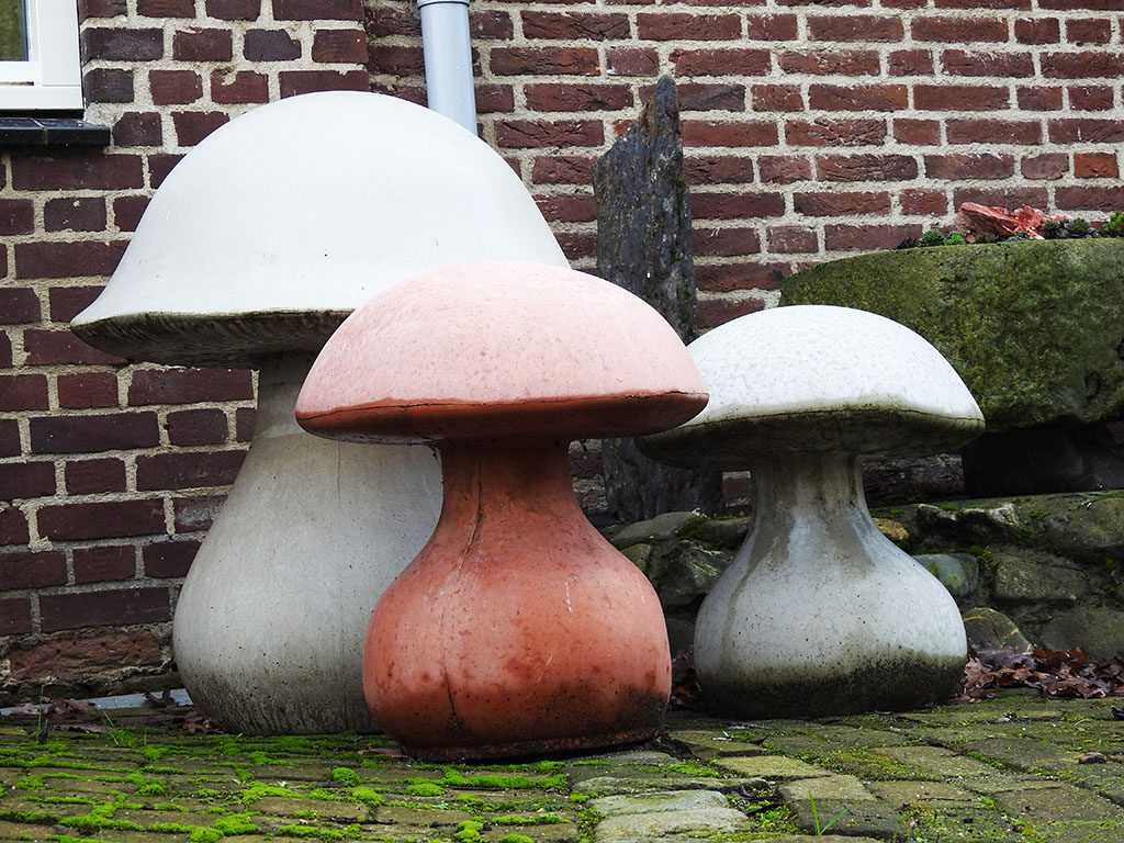 paddenstoel onbewerkt kuulkes